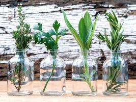 Herbs in glass bottles on a rustic background photo
