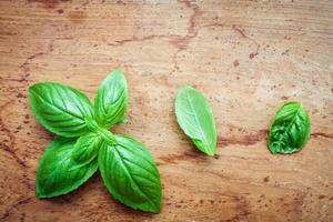 Basil leaves on rustic wood photo