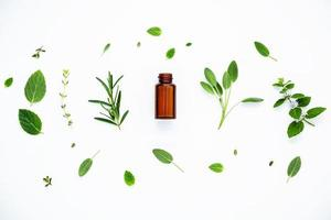 Bottle of essential oil with herbs on white photo