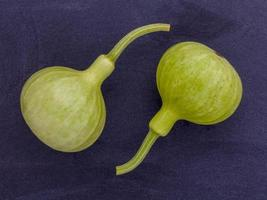 Two bottle gourds