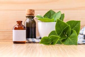 Fresh Mexican mint with bottles photo