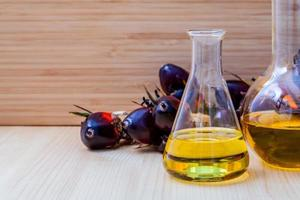 combustible alternativo en frascos foto
