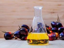 combustible alternativo en un matraz foto