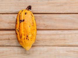 Ripe cocoa pod