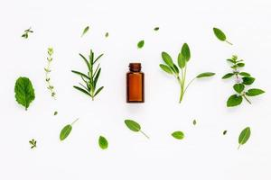 Bottle with fresh herbs photo