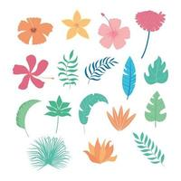 tropical leaves and flowers icon set vector