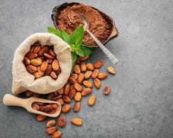 Cacao beans and cocoa powder in a bag and a dish
