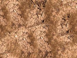 Parche de suelo seco y agrietado de fondo o textura foto
