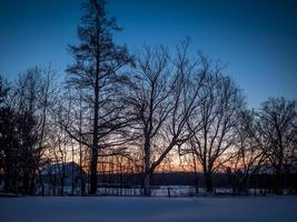 Row of trees and a barn with a colorful sunrise in a clear blue sky