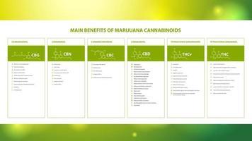 Main benefits of marijuana cannabinoids, information poster with benefits of marijuana cannabinoids and table of natural cannabinoids vector