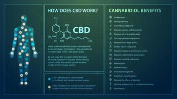 How does CBD work, poster in digital style with infographics, cannabidiol chemical formula and cannabidiol benefits list vector