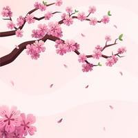 hermoso fondo de flor de cerezo vector