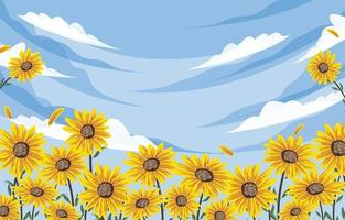 Beautiful Sunflower Background vector