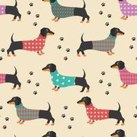Seamless pattern with dachshunds in clothes and dog prints. Vector illustration.