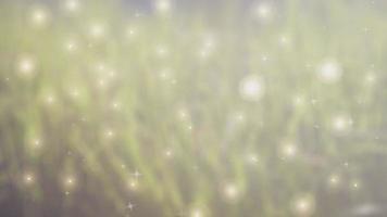 fond magique animé avec des étincelles dans l'herbe verte
