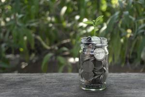 Planta creciente de monedas de ahorro de dinero en la mesa de madera foto