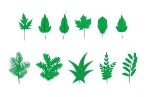 Collection of green plant leaves in flat style vector