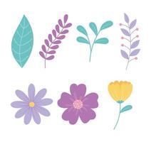 lindas flores y conjunto de ramas vector
