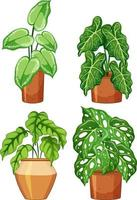 Set of different plants in pot with soil vector