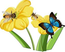 Close up of butterfly on the flowers vector