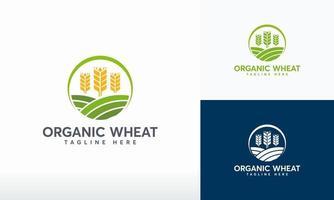 vector de concepto de diseños de logotipo de trigo orgánico, símbolo moderno de grano de trigo, símbolo de logotipo de agricultura