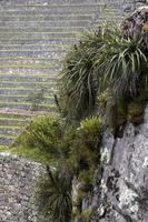 Stone wall in Peru photo