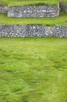 terrazas verdes en peru foto