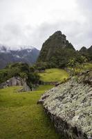 The wilderness in Peru