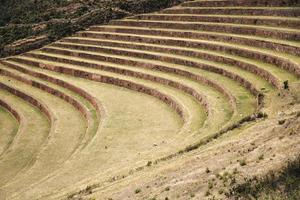 terrazas agrícolas en pisac, perú foto