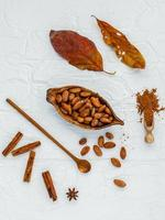 Top view of raw cocoa beans photo