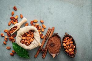 Cocoa powder and cacao beans with cinnamon