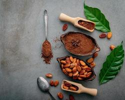 Top view of cocoa powder and cacao beans on concrete