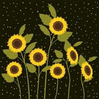 beautiful sunflowers garden scene vector