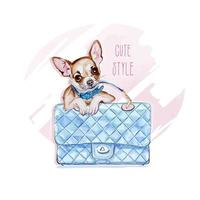 Little chihuahua on the bag. Vector illustration.