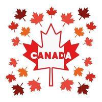 Maple leaf and canada symbol design vector