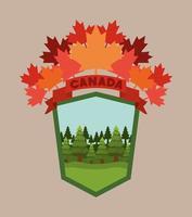 símbolo de canadá y diseño de hojas de arce vector