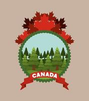 Canada symbol and maple leaves design vector