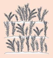 escena de plantas marinas de algas vector