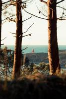 A relaxing view of a lighthouse from the forest during a spring day photo