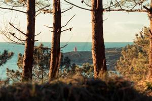 una relajante vista de un faro desde el bosque con los árboles foto