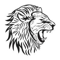 male lion head sketch and drawing vector