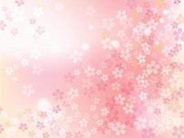 flores de cerezo en plena floración. vector ilustración de fondo floral.