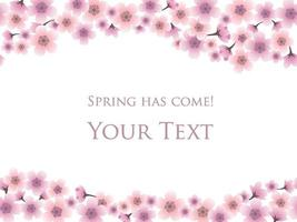 Cherry Blossom Background With Text Space Isolated On A White Background, Vector Illustration.