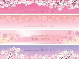 Cherry Blossoms Vector Background Set With Text Space.