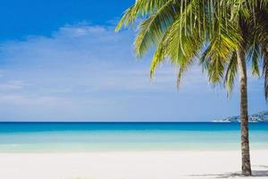 Tropical beach and blue sky background photo