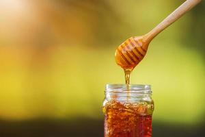 Honey dripping from honey dipper on natural background