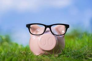Pink piggy bank with glasses on grass under blue sky