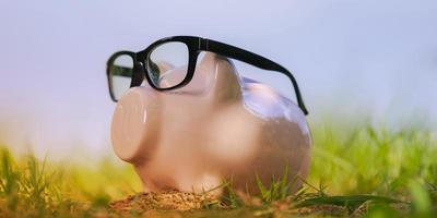 Pink piggy bank with glasses on grass under blue sky photo