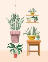 Plantas de interior en colgador de macramé y estantes. vector