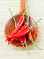 Red chilies in a spoon photo
